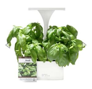 Short Stories LED Indoor Planter + Basil Seeds NEW IN BOX