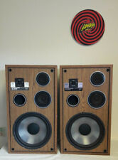 Sound & Vision Dynamic Audio Pro Poly 1901 liquid cooled Speakers (ourcoderp)