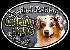 Australian Shepherd - Spoiled Rotten Oval Dog Magnet for Cars