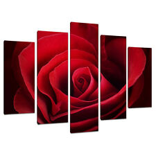 Split Lona 5 Piezas Rojo Rosa Multi Panel cinco parte Flores 5044