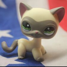 Around The World Masked Siamese Ranch Cat Kids Toys Littlest Pet Shop LPS223