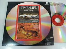 Time Life Chevaux Sauvages Rennes Caribus Alaska Bélier Rocheuses - Laserdisc Ld