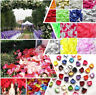 1000pcs Romantic Various Colors Silk Flower Rose Petals Wedding Party Decoration