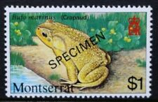 MONTSERRAT 1980 Reptiles and Amphibians. $1 Overprinted SPECIMEN. MNH. SG458