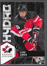 15/16 UD Team Canada Juniors Hydro Glenn Gawdin H-17