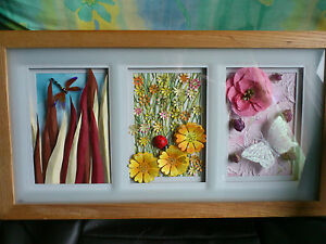 Mixed Media 3 Aperture Picture, Flowers & Nature, Pine Effect Frame BN