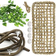 New listing Lizard Bearded Dragon Hammock Set Natural Grass Fibers Pet Recliner Flexible Ben