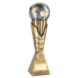 Football/Soccer Trophy - Brz Pew Gold Football On Leaf Burst (4 Categories)