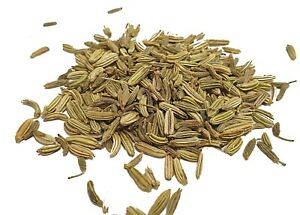 Organic Fennel Seeds - SPICESontheWEB