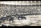 ARENES CORRIDA animée / Carte-Photo postale début 1900