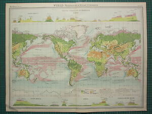 1921 LARGE MAP ~ WORLD ~ VEGETATION OCEAN FORESTS CURRENTS VERTICAL DISTRIBUTION