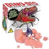 Huevo de dinosaurio fósil Dig Kit 385//209 dino excavación resplandor Ciencia Niños Diversión Set