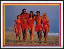 Group Shot #73 Baywatch Merlin 1993 Sticker (C1255)