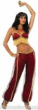 DESERT PRINCESS RUBY BELLY DANCER ADULT HALLOWEEN COSTUME - FITS UP TO 14/16