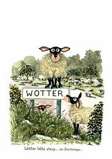"""Mark Denman signed print """" Wotter Lotter sheep on Dartmoor """" funny sheep picture"""