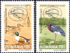 Romania 1999 Europa/Parks/Gardens/Ducks/Stork/Birds/Nature/Wildlife 1v (n46165)