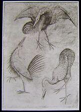 Glass Magic Lantern Slide ARTISTS PENCIL SKETCH NO2 C1910 DRAWING GERMAN ? BIRDS