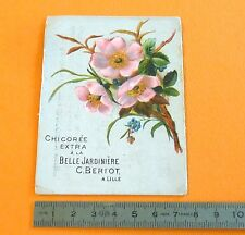 CHROMO CHICOREE C. BERIOT CHICOREE 1890 / 1910 FLEURS AUBEPINE