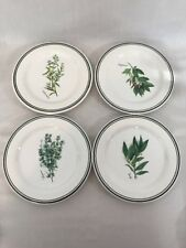 Williams Sonoma  Herbs  Salad Dessert Plates Green Black Bands Set Of 4