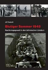 Blutiger Sommer 1945 - Nachkriegsgewalt in den böhmischen Ländern Buch