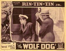 The Wolf Dog - Cliffhanger Movie Serial DVD  Rin Tin Tin  Frankie Darro