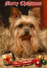 Yorkshire Terrier Dog A6 Christmas Card Design XYORKIE-15 by paws2print