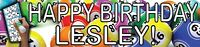 2 BINGO birthday banners for parties party decoration all occasions celebrate