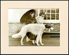 BORZOI LADY AND HER DOGS LOVELY DOG PHOTO PRINT MOUNTED READY TO FRAME