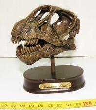 Replique de crane de dinosaure Camarasaurus ( 004 )