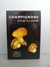 Pilat Albert Champignons Atlas Illustré mycologie naturaliste