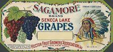 "RARE OLD ORIGINAL 1915 LITHO ""SAGAMORE BRAND"" GRAPES BOX LABEL HECTOR NEW YORK"