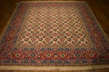 6x6 Square All-Over Waramin Persian Rugs Discount Prices Hand Knotted Rug