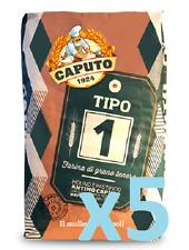 """FARINA CAPUTO """"tipo 1"""" grano tenero 5 kg germe di grano pizza taglio pane dolci"""