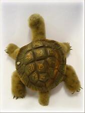 375) Altes Mohair Stofftier Steiff Schildkröte SLO Plüschtier Knopf im Ohr 18cm