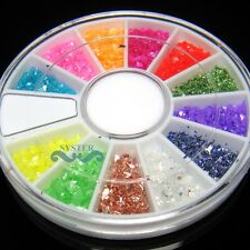 12 Colors Crushed Shell Powder Acrylic Nail Art + Wheel #197