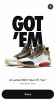 Nike Jordan XXXIV 34 Jayson Tatum PE Zoo In Hand Size 10