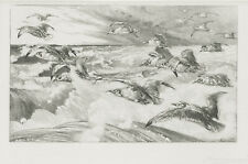 A great Felix Bracquemond etching, Les Mouettes, 1880's pencil signed