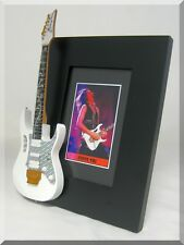 STEVE VAI Miniature Guitar Frame Ibanez White