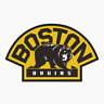 Boston Bruins Logo NHL DieCut Vinyl Decal Sticker Buy 1 Get 2 FREE