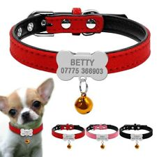 Dog Collar With A Tag Engraved Personalized Name ID Number Phone Emergency Neck