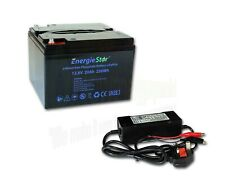 LiFePo4 20Ah 12.8V Battery Rechargeable Lithium Iron Phosphate 12V with Charger