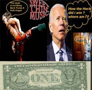2017 $1 Time to Make Joe Biden Go Hungry Bid on My Dollar vs His Nasty old pens.