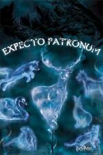 Harry Potter Patronus Stag Spell Poster 24x36 Inch Poster 36x24