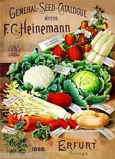 1898 Heinemann Vegetable Vintage Seed Packet Catalogue Advertisement Poster