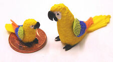 1:12 scale Large & Small Yellow Parrots Dolls House Miniature Exotic Birds p11