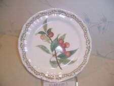 NEW Noritake GOURMET HARVEST Salad, Lunch Plate (Multiple Available)  BRAND NEW