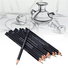 Set Of 14 Sketch Art Drawing Pencil Sketching Oil Base Artist Sketch Soft Cool