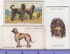 Afghan Hound Dog 3 Different Vintage Ad Trade Cards #3 Canine Pet