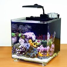 New tmc tropical marine centre microhabitat 15 marine acrylique aquarium set up