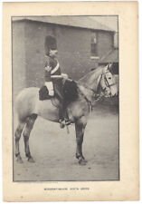 MILITARY Sergeant Major of the Scots Greys Antique Photographic Print c1900